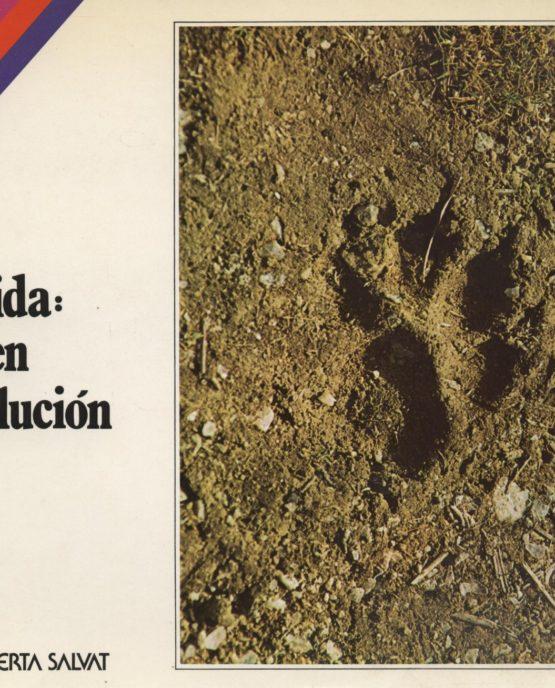 Venda online de llibres d'ocasió com La vida: origen y evolución - Benjamín Fernández Ruíz a bratac.cat
